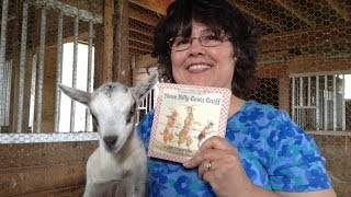 3 Billy Goats Gruff read by Crazy Mamma