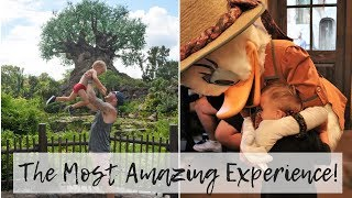 The Most Incredible Day - I cried (again!) Animal Kingdom Vlog 2018 Tour and Overview