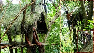 Primitive Technology, Make a thatched roof huts on the tree
