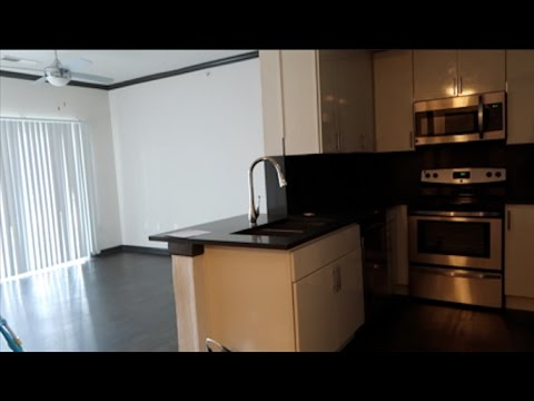 Moved Again! Austin Apartment Tour