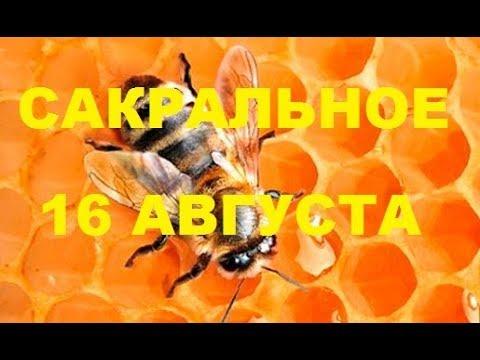 16 августа. Сакральная дата в пчеловодстве.