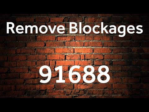 Remove Blocks - 91688 - Grabovoi Numbers - Numerical sequences for healing and materialisation.