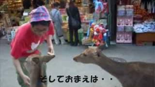 『ワルノリ』 開催日時:平成20年11月26日(水) 開場18時30分 開演19時...