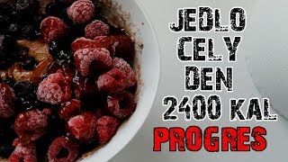 Co som dnes jedol / Rysovacka s Mukim / 2400 KAL / IIFYM / Intermittent fasting / Jedlo cely den