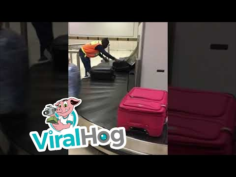 Airport Employee Shows Outstanding Work Ethic || ViralHog
