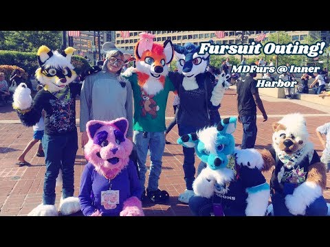 Fursuit Outing at Inner Harbor!