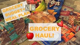 grocery haul   my grocery budget and meal plan   october 5 2016