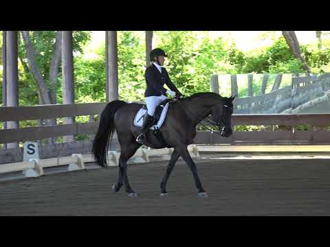 K-Love & Shelby Suelzie - 4th Level Test 1 - ICC Spring Rated Show 2018