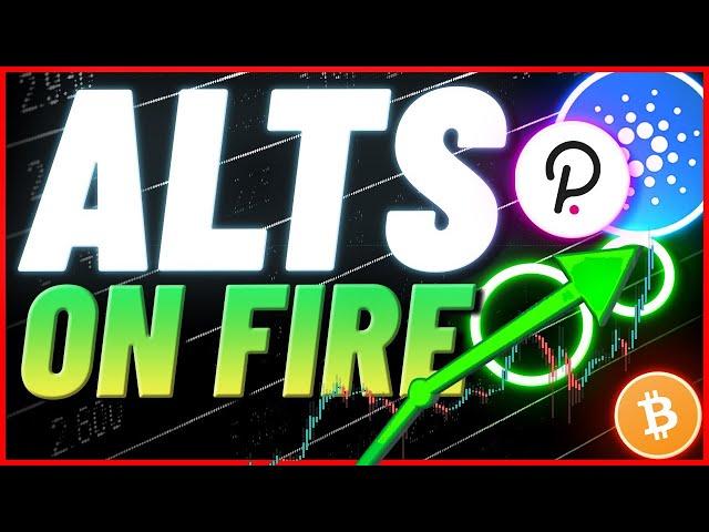 AltCoins Explode- ADA, LINK,  AAVE, DOT, AVAX - Bear Forage!!!