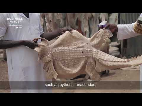 Made in Nigeria: Meet The Multi-Million Dollar Poor Leather Men At Kano Tannery | Pulse TV