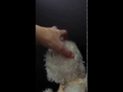 Winnie Wuzzwhite Boyds Bear Musical Stuffed Animal