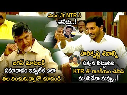 Ys Jagan Comments On Jr NTR Father Harikrishna || AP Assembly Budget Session 2019 || Life Andhra Tv