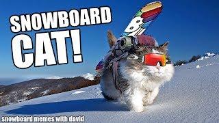 SNOWBOARD MEMES!