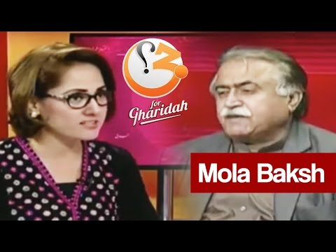 Why Minority Protection Bill Rejected? G For Gharidah 2 December 2016