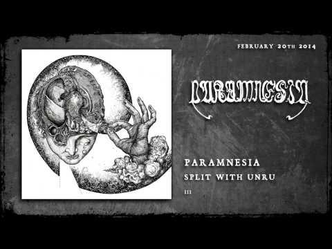 Paramnesia - III