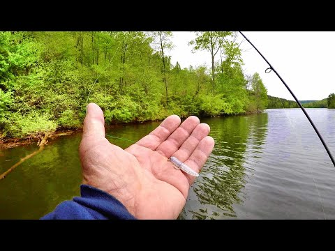 Catch SLABS All Day Lengthy With This SIMPLE Tip! Crappie Fishing With A Jig