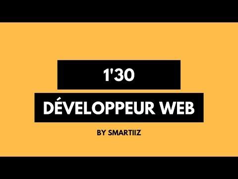 Le DEVELOPPEUR WEB: Pro des langages informatique !