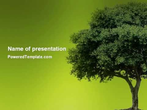 green tree on light olive background powerpoint template