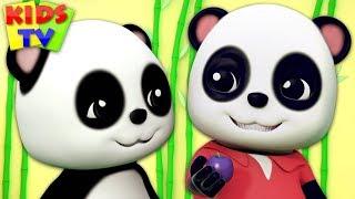 Simple Simon   Baby Bao Panda Cartoons   Nursery Rhymes & Videos for Babies - Kids TV
