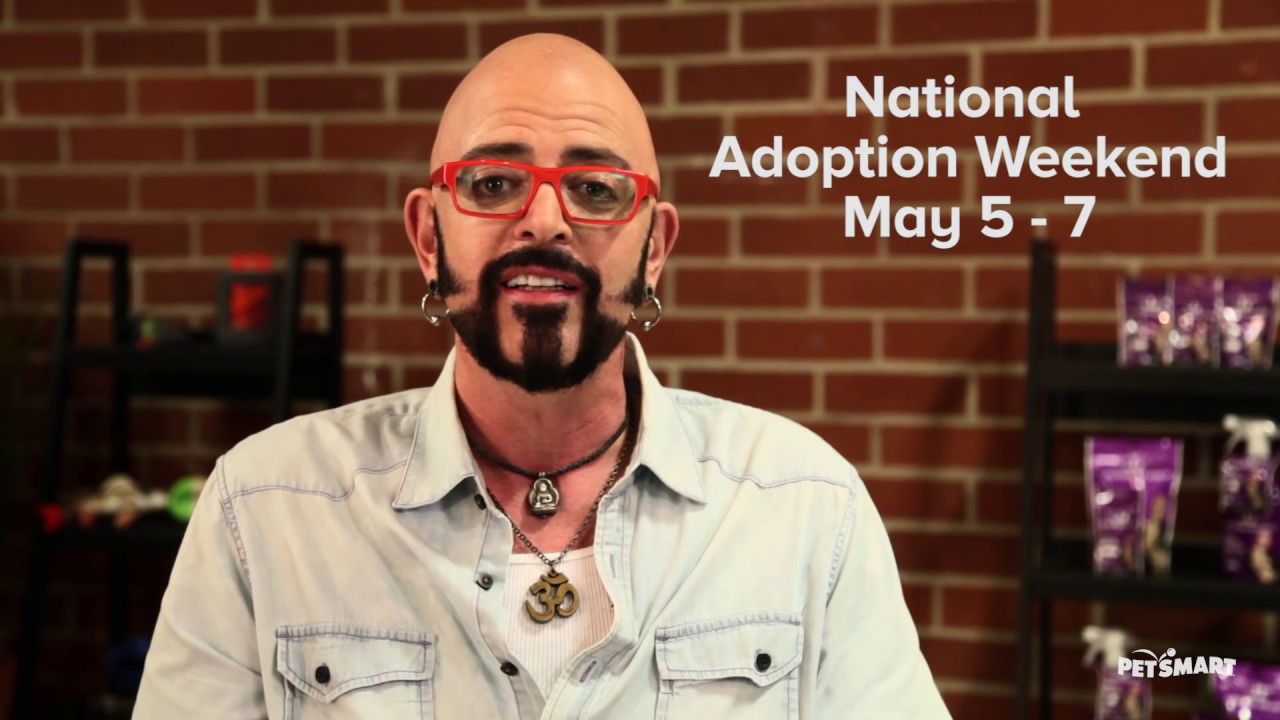 Jackson galaxy national adoption weekend youtube for Jackson galaxy petsmart