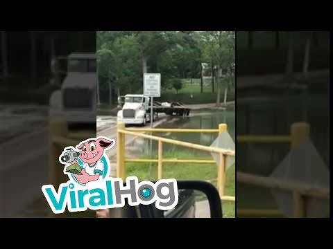 Texas Trucker Makes it Work || ViralHog