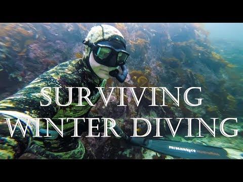 Surviving Winter Freediving