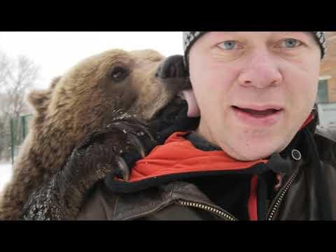 Медведь Мансур - 19.01.2019