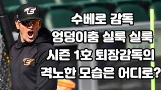 음악 느끼며  '엉덩이 춤 실룩 실룩~' 수베로 감독 '퇴장1호' 분노한 모습은 어디로?