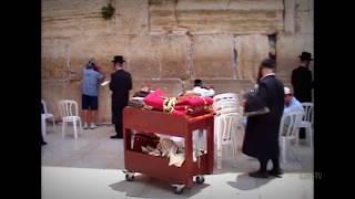 Стенa плача в Иерусалиме - это место блаженства история о Стене плача