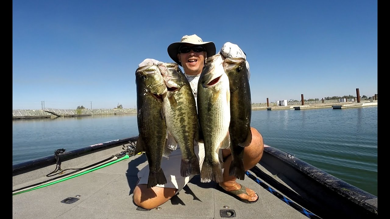 Labor day 39 15 bass fishing on the california delta youtube for California 1 day fishing license