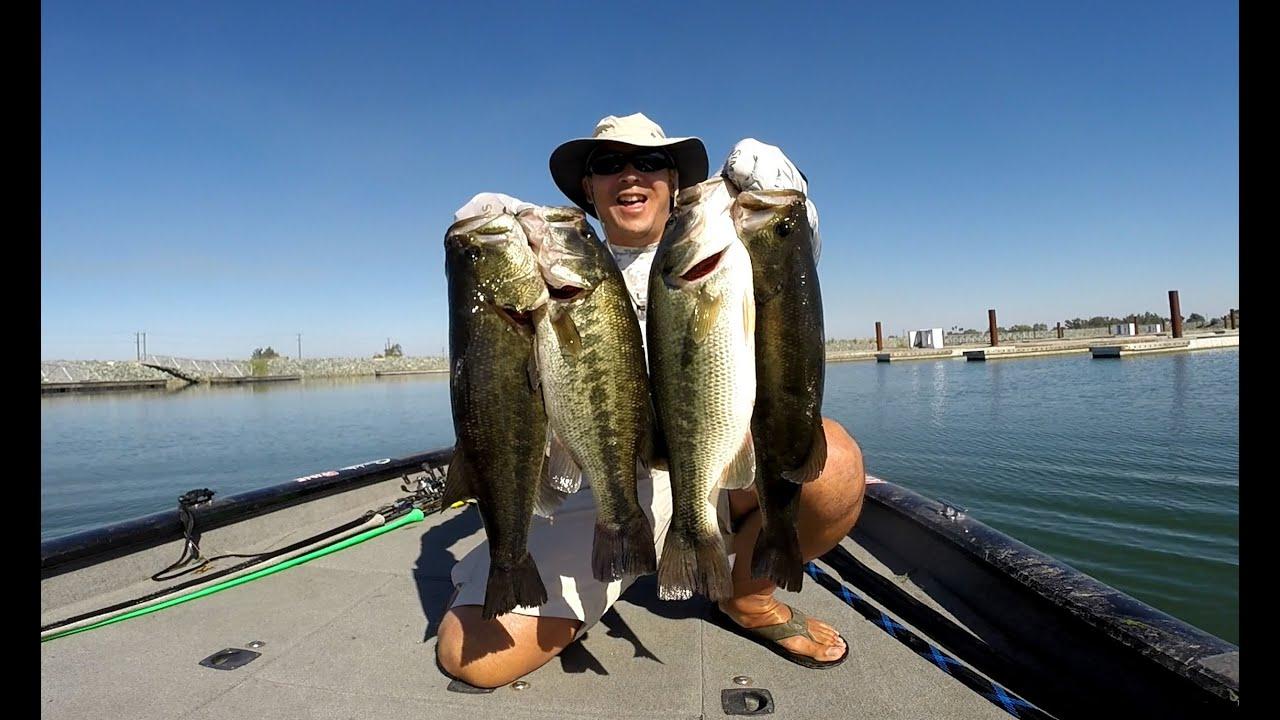 Labor day 39 15 bass fishing on the california delta youtube for California delta fishing report