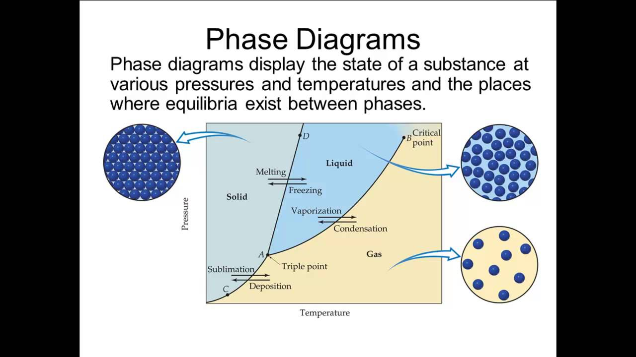 phases of matter and vapor pressure essay Essays, term papers, book reports, research papers on physics free papers and essays on changes of matter state we provide free model essays on physics, changes of matter state reports, and term paper samples related to changes of matter state.