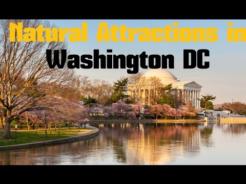 TOP 15. Natural Attractions in Washington DC - Nature, Parks, Gardens