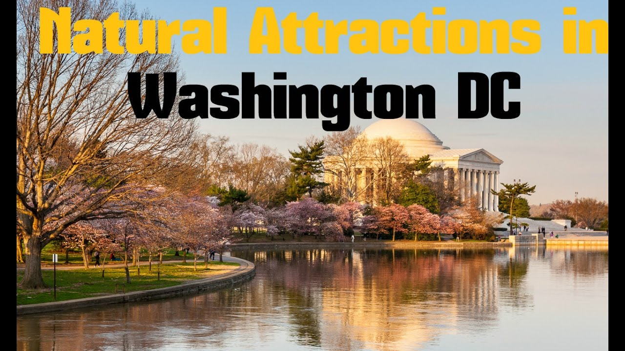 TOP 15. Natural Attractions in Washington DC - Nature, Parks ...