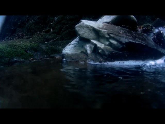 Wilton Lodge Park Dean Burn Waterfall Hawick - Underwater Camera 4K Quality - Clip 1