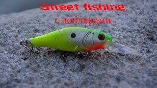 Street fishing с воблерами..
