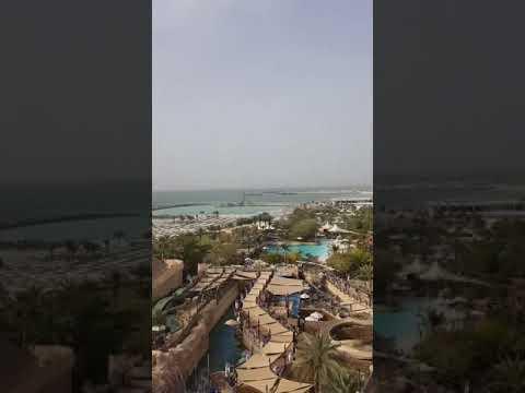 go ahead gibbon! Aquapark Wild Wadi Dubai.