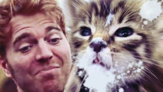 "What's Wrong Shane? Cat Got Your Tongue (""Shane Dawson"" Exposed)"