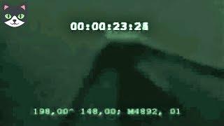 5 MONSTRUOS MARINOS REALES CAPTADOS EN VIDEO - DESCUBRIMIENTOS MAS ATERRADORES
