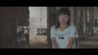 映画『今日もどこかで馬は生まれる』予告編(ショート)