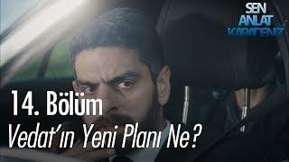 Vedat'ın yeni planı ne? - Sen Anlat Karadeniz 14. Bölüm