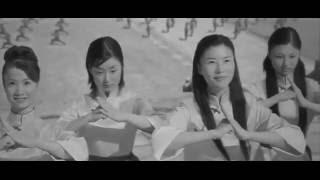 Shaolin Girls 2008 Hindi Dubbed Movie (chinese)