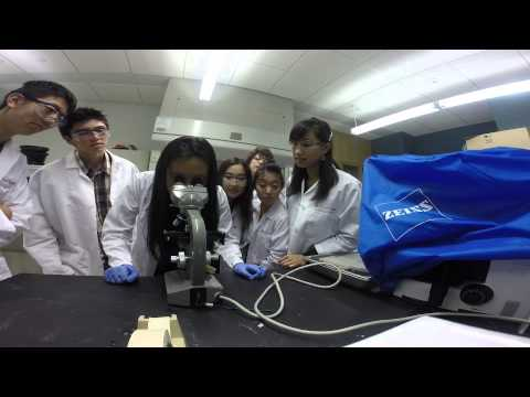 Let It Grow - High School Stem Cell Researchers - City of Hope