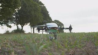 بالفيديو.. طائرات بدون طيار لتسهيل عمل المزارعين