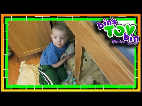 WE HAVE A NEW PLUMBER IN THE FAMILY! 3.19.2017   Bins Toy Bin Daily Vlogs