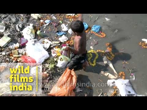 Rag picker sorts refuse left at Yumana bank – Delhi