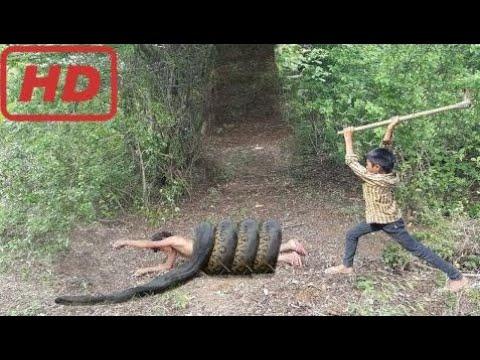 Life Tv  Deh?et Verici! Cesur Çocuklar Ormanda Yürürken Büyük Y?lan Yakalarlar