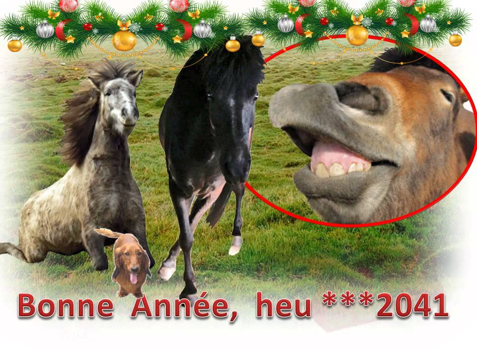 Voeux noel nouvel an cartes virtuelles youtube for Carte de voeux humour