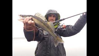 Нужен ли на рыбалке эхолот, Ловля судака 2020, Судак