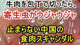 牛肉を包丁で切ったら、寄生虫がウジャウジャ…止まらない中国の食肉スキャンダル